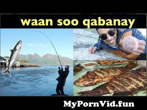 View Full Screen: kaluun malaay aan soo qabanay.jpg