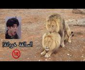 قناة الكحلاء - Al kahla TV