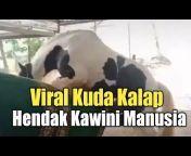 Video Viral Semua Untuk Kita