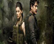 In dem Action-Thriller Wild Dog wird eine Spezialeinheit unter dem Kommando von Vijay Varma (Nagarjuna Akkineni) damit beauftragt, die Terroristen zu finden, die für eine Reihe verheerender Bombenanschläge verantwortlich sind. (MH)<br/><br/>Mehr dazu: https://www.moviepilot.de/movies/wild-dog
